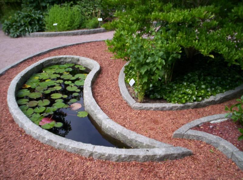 Trädgård trädgård damm : Namnlöst dokument